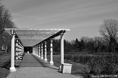 Pergola (Jim Frazier) Tags: park wood winter light blackandwhite bw abstract nature monochrome beautiful beauty lines gardens museum garden landscape botanical march vanishingpoint wooden illinois scenery pattern quiet scenic structures angles beautifullight peaceful dupage manipulation calm class il serenity pensive botanic serene desaturated elegant benches pillars botanicgarden preserve botanicalgarden 2009 wheaton publicgarden pergola classy cantigny repeating gardenblog interestinglight dupagecounty q4 cantignypark contempletive tostategroup tosets ld2009 20090320cantigny 090320c ldapril ©jimfraziercom gardenartifacts pergolacantigny whimsicalgardenstatuary