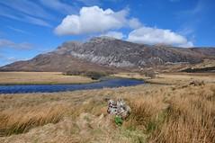 Arkle from near Lone (Paul Sammonds) Tags: mountain walking scotland sutherland corbett