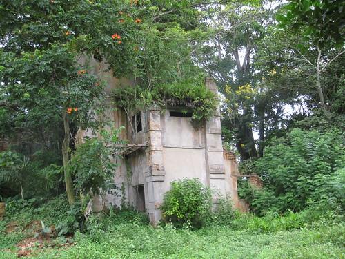 The house of RibaRiba, the grandfather
