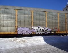 01-31-09 (46) cc (This Guy...) Tags: train graffiti graf traincar 2009 tars