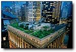 『Earth Day』世界地球日:在绿色屋顶唱着你的歌