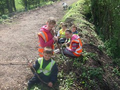Junior Ecology Group members at work on the Mountsorrel Railway planting wild flowers