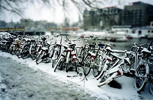 Amsterdam Fria