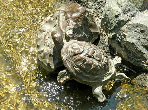 Bronze_Turtle