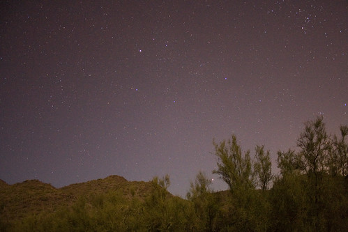 Taurus Among the Hills of Cave Creek