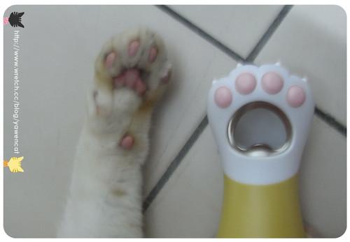 你拍攝的 貓腳開瓶器。