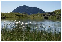 Ausblick Hochtorsee (LaToupie) Tags: mountains alps salzburg nature austria tirol sterreich natur berge alm alpen tyrolia