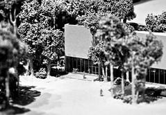 Miniaturized (ohadby) Tags: newyorkcity bw white newyork black macro art museum canon miniature manhattan midtown ohad 50d ohadonline canonef24105 canon50d museumofmodenart ohadbenyoseph ohadme
