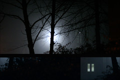 Spontaneous Triptych (itssummertime) Tags: trees light mist rain backlight 50mm triptych durham random mistake cardreader edens sillycamera datatransfer
