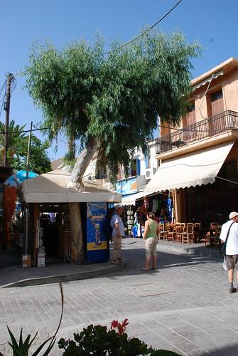 Rethymnon tree