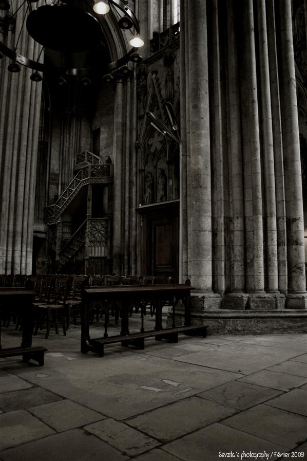 Notre Dame #8