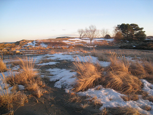 island in snow