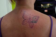 Borboleta (cover-up) (Sabrina Ricci) Tags: tattoo butterfly dolphin borboleta portfolio tatuagem coverup golfinho