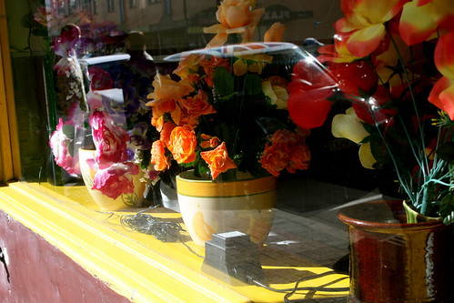Saturday: Fake Flowers, Petone
