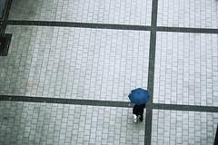 ulm man with umbrella (floffimedia) Tags: man umbrella mann muster ulm pflaster regenschirm linien