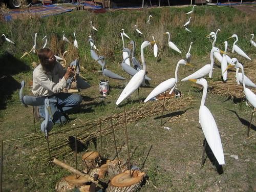 Mark's Birds
