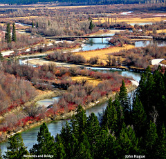Wetlands and Bridge (diecastbc) Tags: nature scenery bc radium columbiavalley