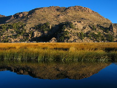 Lake Titicaca (Py All) Tags: mountain lake reflection peru titicaca southamerica nature water america montagne eau south lac reflet sud puno  prou amrique amriquedusud topshots