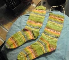 Green Envy Socks