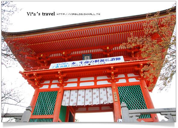 【京都春櫻旅】京都旅遊景點必訪~京都清水寺之美京都清水寺5