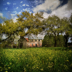 Rural Perfection (evanleavitt) Tags: county wood morning blue light house texture abandoned home beautiful yellow rural ga georgia moss day skies view decay live grand olympus spanish weathered wildflowers oaks laurens hdr perfection e510 photomatix supershot sumterville vertorama