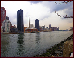 "Rain clouds over Roosevelt Island..... (""alley cat photography') Tags: newyorkcity uptown rooseveltisland manhattanview rubyphotographer formerlywelfareisland"
