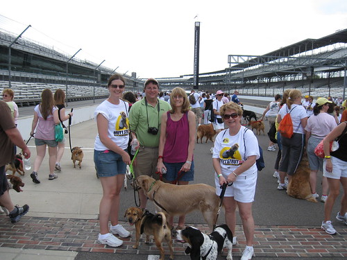 Beverly's Precious Pets Group at Mutt Strut