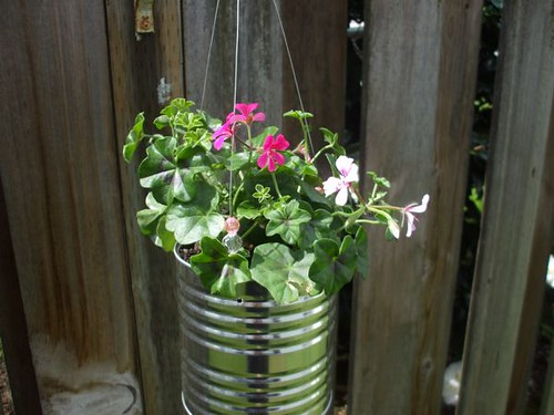 my recycled planter project