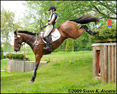 High Society III and Jessica Hampf (Rock and Racehorses) Tags: canada jump drop highsociety eventing jerseyfresh jessicahampf ska2248