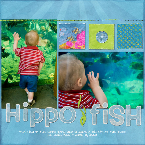 Hippo Fish