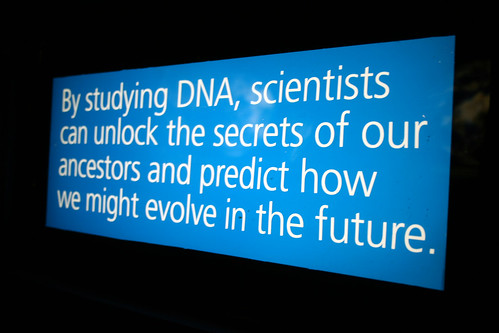 DNA sign, Maropeng, Cradle of Humankind