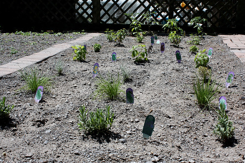 Garden At Atelier