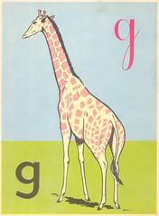 g girafe