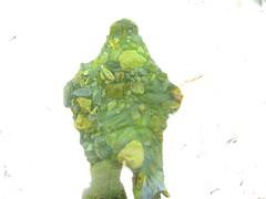 Stoneman! (David Darricau) Tags: shadow wild mountain n