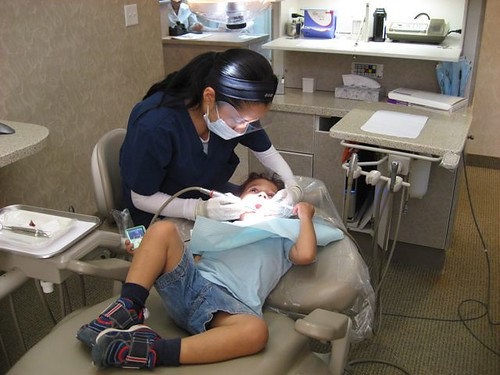 Squid at dentist