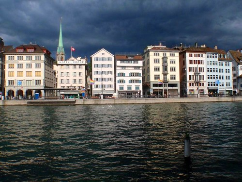 Zuerich_Bad_Weather_Frog-Web