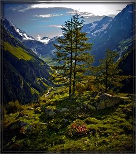 Swiss summer time (2) June 29,2009 .