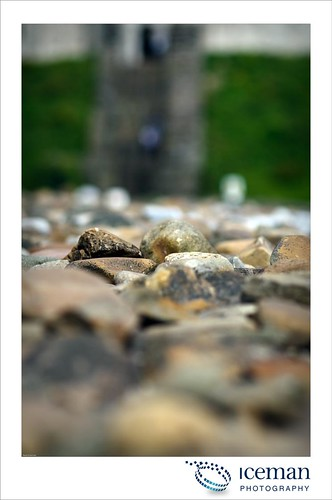 Cardiff Castle 083