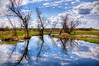 Springtime reflection (Frozen Image Photography) Tags: trees reflection green water minnesota clouds creek spring stream flood hero winner hdr budding matchpointwinner thechallengefactory thepinnaclehof tphofweek97 shchofhonorable frozenimagephotography