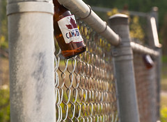I Am Canadian Fence Friday {Explore Front Page} (marysmyth(NOLA13) ️) Tags: beer fence bottle bokeh chain link friday hff iamcanadian explorefrontpage fencefriday