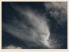 Windblown clouds (Zelda Wynn) Tags: sky weather clouds heaven wind auckland nz waitakere troposphere inspiredbyalfredstieglitz zeldawynn