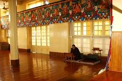The Praying Lama. (Lucky-S) Tags: india colour colors saint club temple photography hall god praying lord tibet study monastery lucky recite lama ritual tibetan priest spiritual tamron hymn 18200 fakir himachal deity dharamshala dalai assembly pradesh mcleodganj clergy kangra sharma thepca prabhat worshiping gandhidham pcog a350   321300n 761912e 322167n 7632e