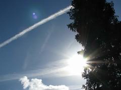 Yeaaaaah, the sun! (Ameliepie) Tags: winter light sky sun tree nature clouds garden spring seasons enjoy sunbeams