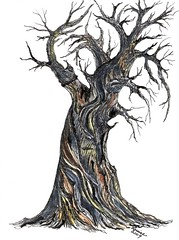 BRISTLECONE PINE OLD DINOSAUR (Louise001) Tags: trees art nature pine ink watercolor lovers gnarly bristlecone oldtrees blueribbonwinner