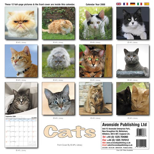 Old Calendar that Feature Pets