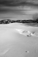 Alona Bay - B&W (Bryan O'Toole) Tags: winter bw lake snow ontario canada landscape blackwhite nikon scenic superior lakesuperior snowscape winterscape northernontario algoma nikkor1870mm alonabay nikond80 theanopoint