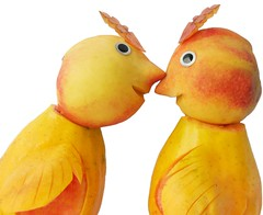 Lovebirds (RR) Tags: food plant playing silly bird art love water frutas birds yellow fruit poetry with humor peach papaya romance fruta again tropical lovebirds lovebird languages anthropomorphic playingwithfood pche pfirsich melocotn durazno mamo pssego anthropomorph thesame eftali sorryguys pessego antropomrfico i partofthe isbasically antropomorfico anthropomorphe startingnow mycareer onthewine wonthappen wordinall incheap iblameit spreadhumorcoalition brincandocomacomidablog