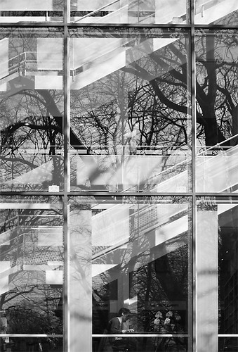 Reflections in a window (by Hamsteren)