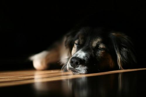 Judy Sunbathing