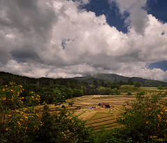 ~ The Business Location ~ (Peem (pattpoom)) Tags: field landscape explore  theunforgettablepictures vosplusbellesphotos nikkor1224mmf4gedifafs